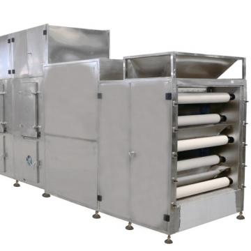2m² Coffee Processing/Vegetable/Mango/Dried Fruit/ Freeze Dryer Machine Price