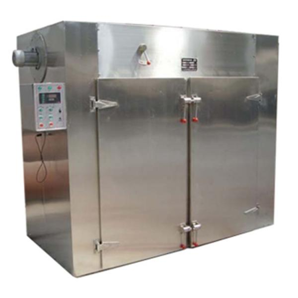 Fd-100n Food Vacuum Freeze Dryer Price Fruit Drying Machine