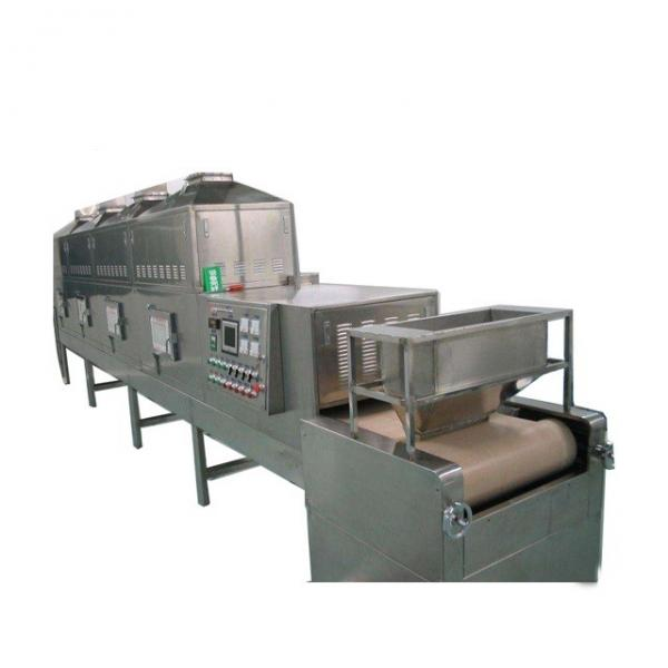 100kw Industrial Microwave Dryer Heating Type High Production Mango Drying Machine for Philippine Market