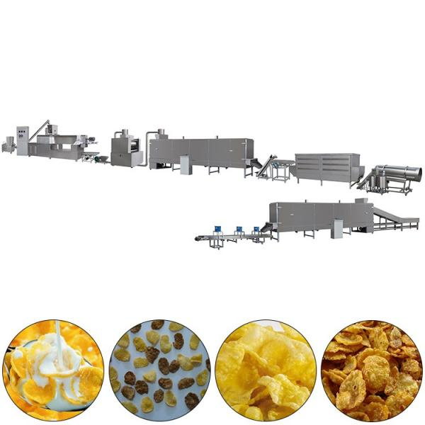Factory Price Corn Flakes Breakfast Cereals Corn Flake Production Making Machine