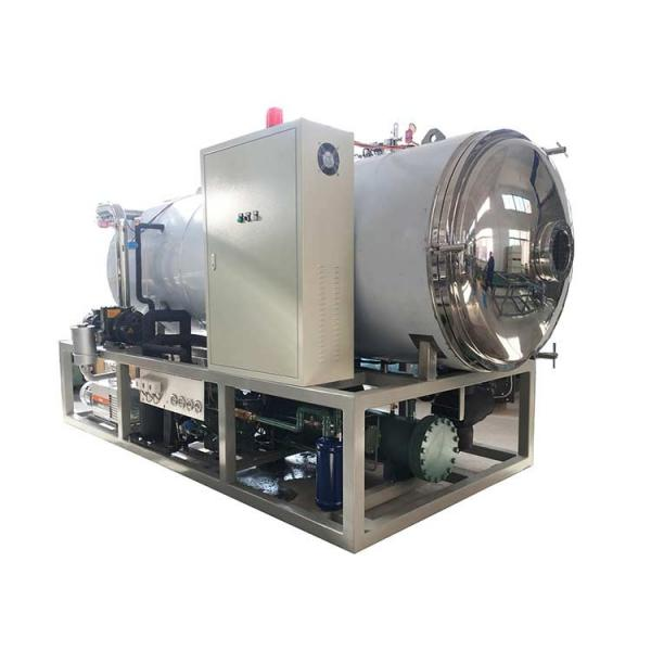 Fruit Freeze Drying Dryer Dehydrator Machine Price