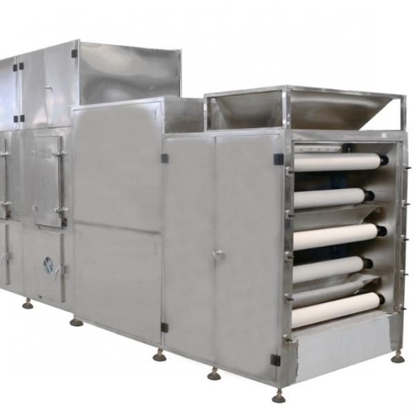 2m² Coffee Processing/Vegetable/Mango/Dried Fruit/ Freeze Dryer Machine Price