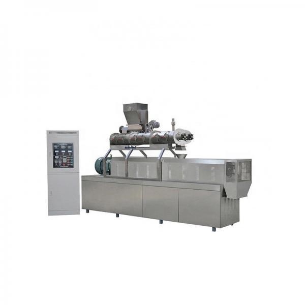 Automatic Dry Wet Floating Sinking Fish Shrimp Dog Cat Bird Pet Food Plant Production Line Equipment Machine